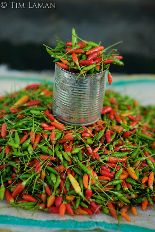 Market in Tobelo town, Halmahera Island, Indonesia.  <br />Detail of chili peppers.