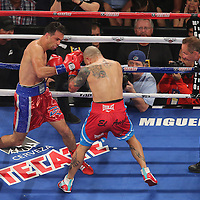 Miguel Cotto of Puerto Rico (right) and Delvin Rodriguez of the Dominican Rebublic square off during their 12-round super welterweight bout at the Amway Center in Orlando, Florida on Saturday, October 5, 2013. Cotto won by knockout in the 3rd round of the match. Cotto went on to win the match in the 3rd round. (Photo/Alex Menendez)