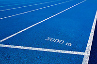 Photo of blue 3000 meter running tracks