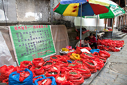 Grains, herbs and medicines for sale near the entrance to West Street, a landmark of Yangshou for more than 1400 years. Yangshuo is a county and city under the jurisdiction of Guilin City, in the northeast of Guangxi Province, China. Its seat is located in Yangshuo Town. Surrounded by karst peaks and bordered on one side by the Li River it is easily accessible by bus or by boat from nearby Guilin. It is a major tourist and resort destination for Chinese and foreigners alike.