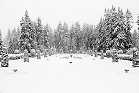 Formal gardens turned to a winter wonderland in black and white