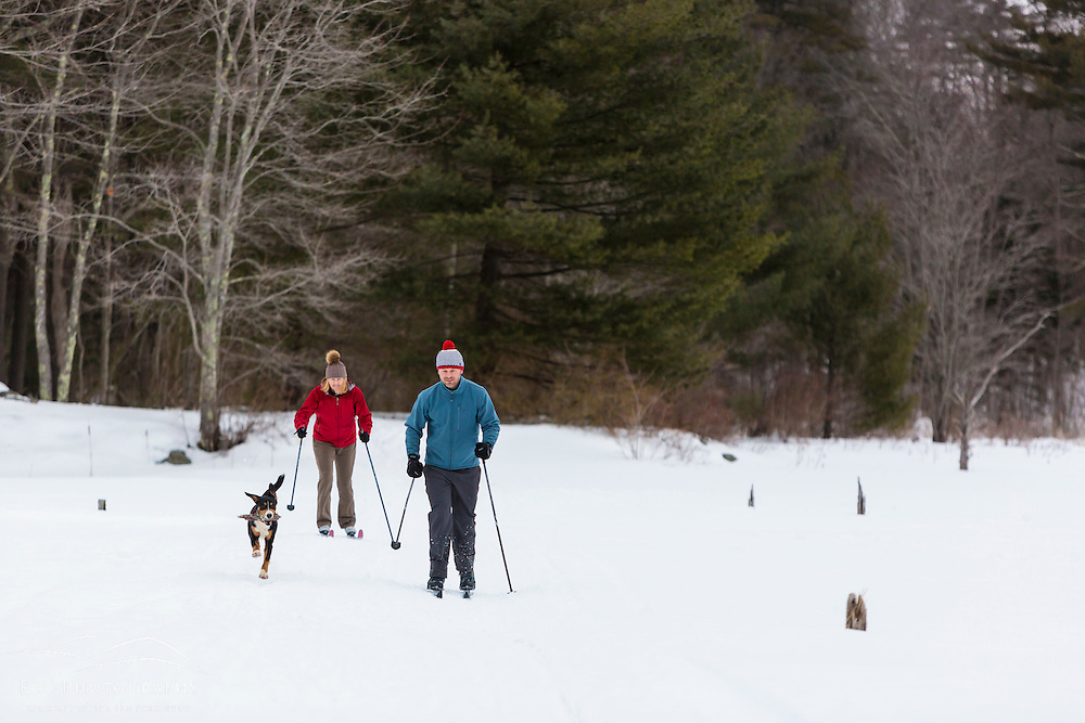 A man and woman cross country skiing with their dog on a frozen pond in Epping, New Hampshire.