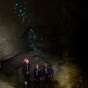 Participants  look at the glow worms on the cave roof while Black Water rafting in the Waitomo Glowworm Caves, Waitomo, North Island, New Zealand..The Legendary Black Water Rafting Company is New Zealand's first black water adventure tour operator which takes tourists through the  Ruakuri Cave at Waitomo..The five hour expedition combines abseiling the 35 metre entrance. climbing, a flying fox. black water tubing, leaping and floating through Ruakuri Cave and observing glow worms. The journey concludes  into the sunlight of the Waitomo forest..Waitomo, New Zealand,, 14th December  2010 Photo Tim Clayton