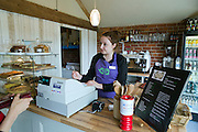 A young woman is serving tea and cake in a shop in Beningbrough, Yorkshire, England, United Kingdom.