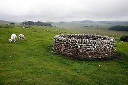 UK ENGLAND NORTHUMBERLAND 6JUL08 - 18th century well at Housesteads Roman Fort along Hadrian's Wall in Northumberland, northern England. ..jre/Photo by Christian Aid / Jiri Rezac..© Jiri Rezac 2008..Contact: +44 (0) 7050 110 417.Mobile: +44 (0) 7801 337 683.Office: +44 (0) 20 8968 9635..Email: jiri@jirirezac.com.Web: www.jirirezac.com..© All images Jiri Rezac 2008 - All rights reserved.