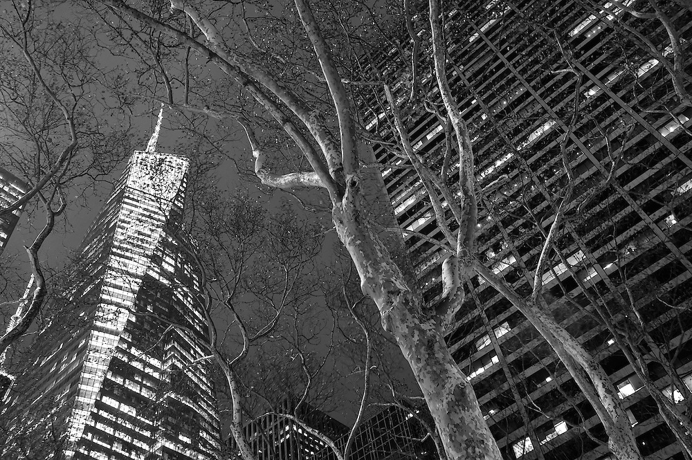 Bank of America Tower, Bryant Park,Manhattan,New York,USA..