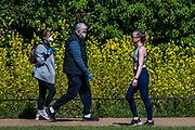 People are out exercising on bikes and on foot, some in masks and some not. Central London is pretty crowded as the sun comes out again. The 'lockdown' continues for the Coronavirus (Covid 19) outbreak in London.