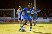 Peterborough midfielder Ivan Toney (17) during the EFL Sky Bet League 1 match between Peterborough United and Burton Albion at London Road, Peterborough, England on 4 May 2019.