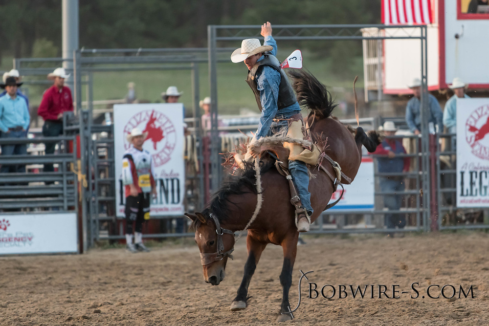 Saddle bronc rider Colt Allred rides Summit Pro Rodeo's Bullfrog in the second performance of the Elizabeth Stampede on Saturday, June 2, 2018.
