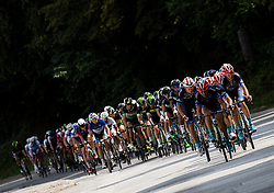 Peloton during cycling race 48th Grand Prix of Kranj 2016 / Memorial of Filip Majcen, on July 31, 2016 in Kranj centre, Slovenia. Photo by Vid Ponikvar / Sportida