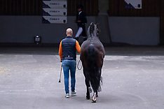 Grand Prix Dressage - Goteborg 2019