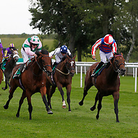 Campanology and Sean Levey winning the 2.05 race