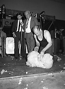 Sheep Shearing and Fleece Rolling Competition. (R57)..1987..07.05.1987..05.07.1987..7th May 1987..The International Sheep Shearing Championship was held today at the RDS in Dublin. A second part of the competition involved the rolling and tying of the fleece once the sheep is sheared...Seamus Brannick is pictured in the Fleece Rolling and Tying section under the watchful eyes of the judges.