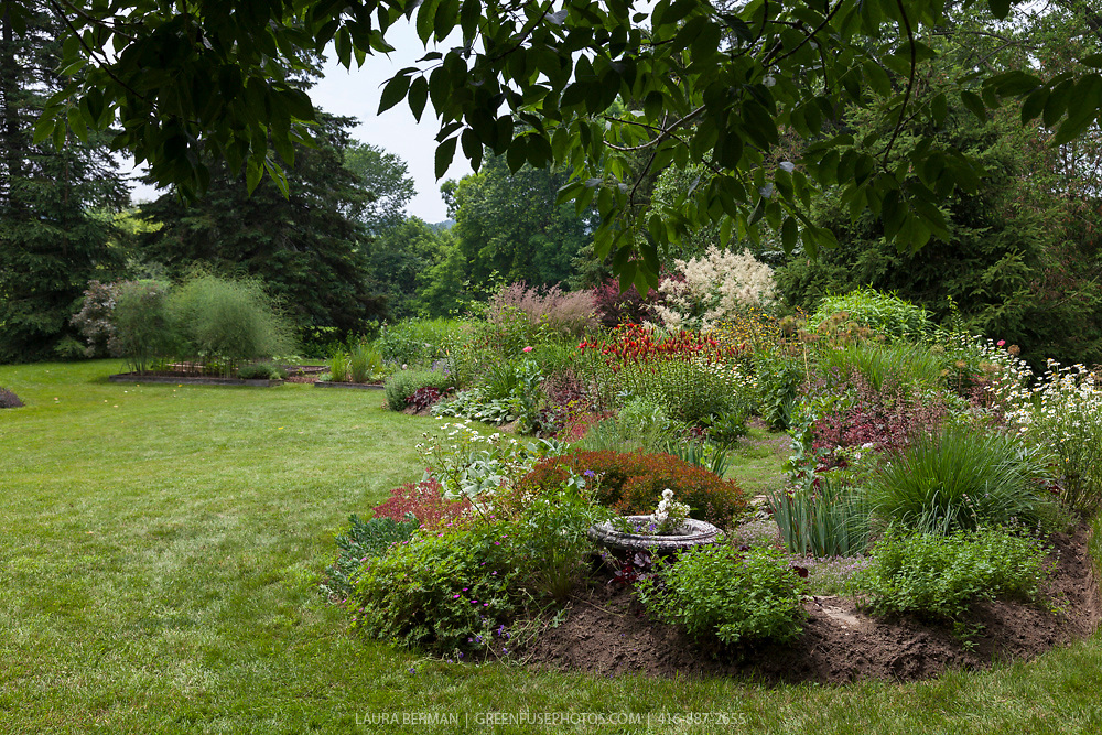 Port Hope Garden Tour 2013: Jane Currelly's garden