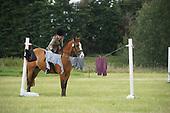 Class 17 - Ridden Handy Pony or Horse
