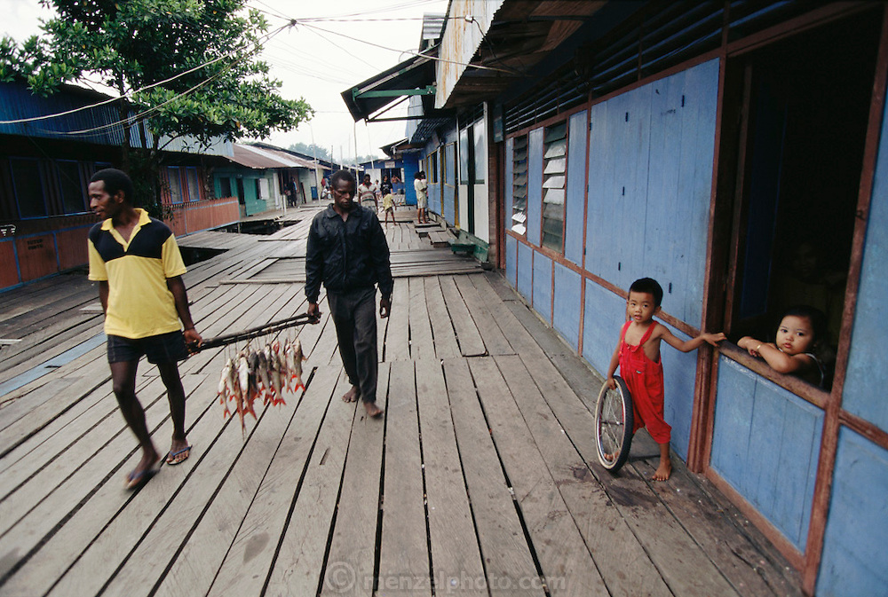 Two local men carry fish strung on poles in downtown Agats, the main town of the huge Asmat swamp. The town has boardwalks built on high poles because the tides of the Arafura sea are very big. Irian Jaya, Indonesia. Since the making of this photograph, Irian Jaya was renamed Papua.