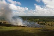 Fire in wetland<br /> West Demerara Conservancy<br /> West of Georgetown<br /> GUYANA<br /> South America