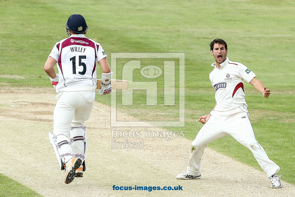 Lewis Gregory of Somerset County Cricket Club (right) celebrates taking the wicket of David Willey of Northamptonshire County Cricket Club (left) during the LV County Championship Div One match at the County Ground, Northampton<br /> Picture by Andy Kearns/Focus Images Ltd 0781 864 4264<br /> 15/07/2014