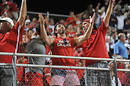 Ole Miss vs. Louisiana-Lafayette fans in an NCAA Super Regional game in Lafayette, La. on Sunday, June 8, 2014. Mississippi won 5-2.