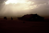 Sandstorm breaking up at Shammar camp in the Nafud Desert.  The Black goat hair tent has been lowered to keep the sand and wind out. Saudi Arabia