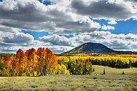 Glorious colors mid September , Hancock peak along Hwy 143. High plateaus around 10,000 ft, outside of Brian Head and Cedar Breaks. FALL- HWY  143- CEDAR BREAKS- BRIAN HEAD, UTAH