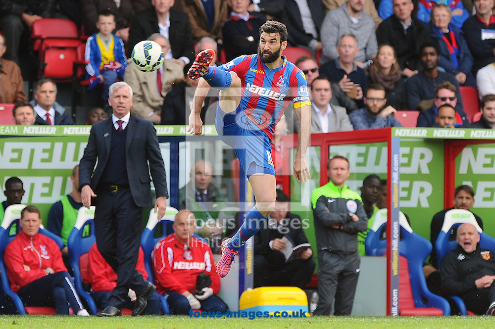 Mile Jedinak of Crystal Palace controls the ball during the Barclays Premier League match at Selhurst Park, London<br /> Picture by Seb Daly/Focus Images Ltd +447738 614630<br /> 25/04/2015