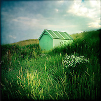 Hut on sand dunes, Northumberland, UK