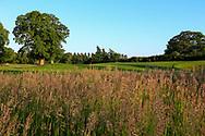 Luttrellstown Castle Golf Resort.<br /> Picture: Golffile | Fran Caffrey<br /> <br /> <br /> All photo usage must carry mandatory copyright credit (© Golffile | Fran Caffrey)