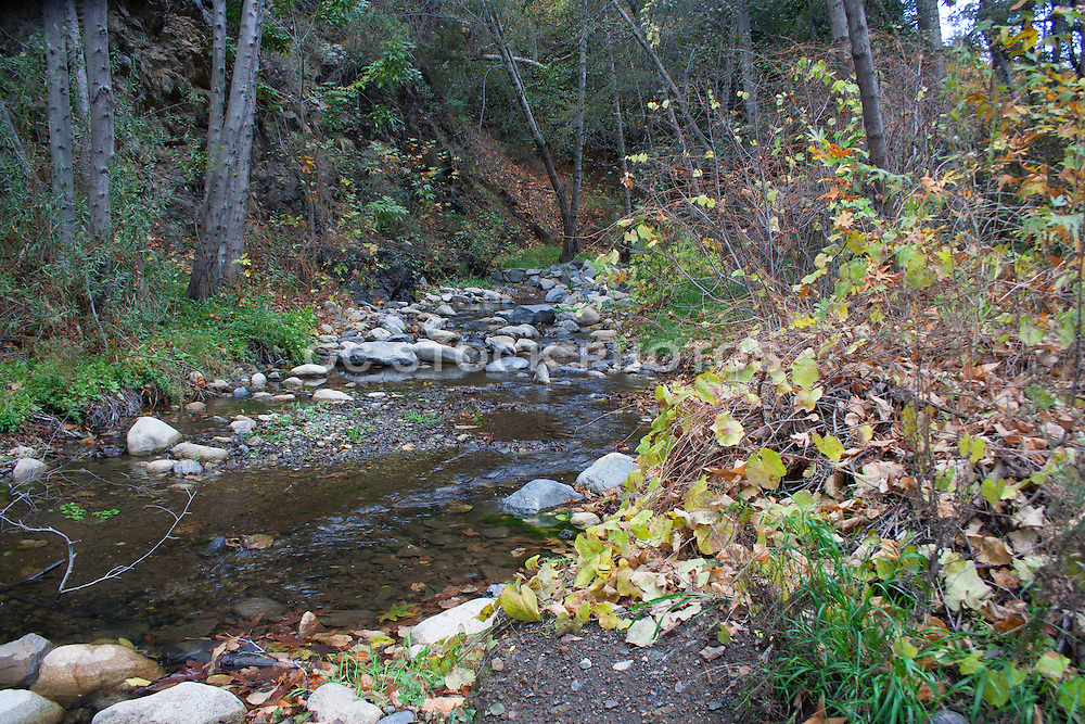 Santiago Creek in Orange County California
