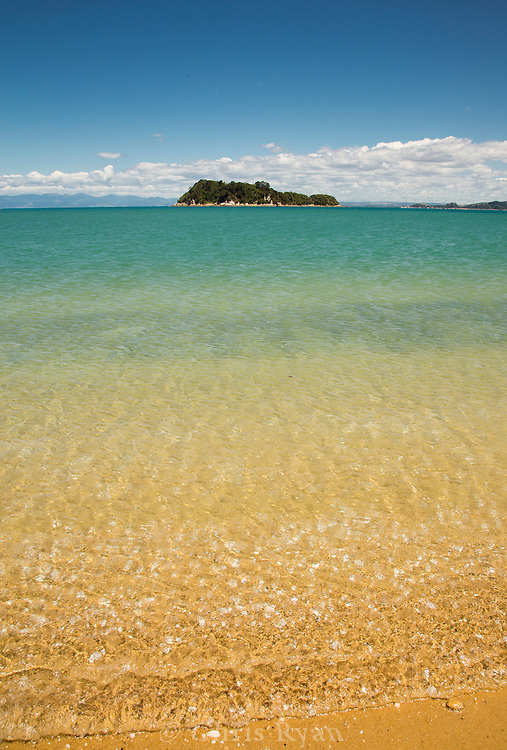 Island in Tasman Bay, Abel Tasman National Park, South Island, New Zealand