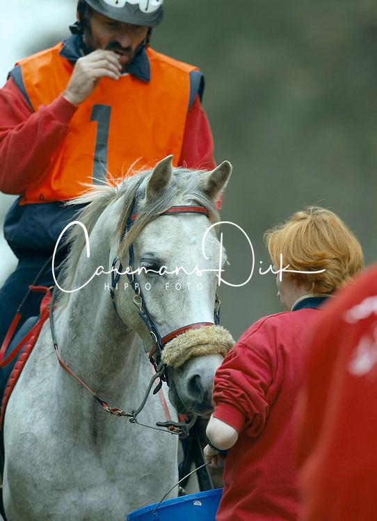 Streignard Christian - Dasarin<br /> Endurance Peer 2002<br /> &copy; Hippo Foto - Dirk Caremans