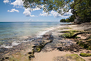 There are many beautiful spots to visit in Barbados along the coast.  From the rugged North Point to calm idealic West Coast and freshness of the South. All have their own natural beauty and must be seen,   <br /> ST ALBANS BEACH, BARBADOS #2