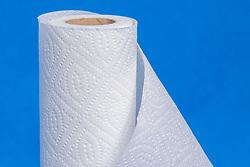 Paper Towel roll