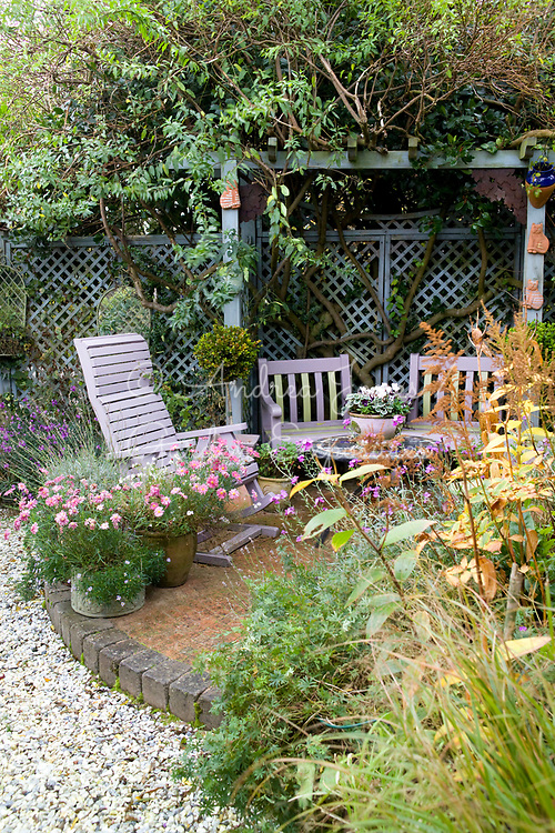 Brick paved patio with wooden seating, table, pots of pink flowering Asters & trellis screen pergola with foliage & stems of climbing plants.