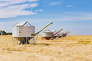 Mobile field bin grain silos in paddock after wheat harvest near Rupanyup, New South Wales, Australia
