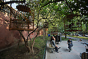 Jingshan (Coal Hill) Park. Old men with their songbirds.