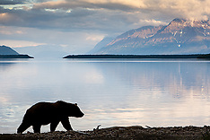 Alaska #2 2008