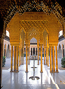 SPAIN, GRANADA Alhambra Palace, Court of the Lions