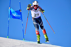 WALSH Thomas C, LW4, USA, Giant Slalom at the WPAS_2019 Alpine Skiing World Cup, La Molina, Spain