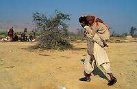 Pakistan - La fête des soufis - Province du Sind et du Balouchistan - Pélerinage soufi de Lahoot - Cette femme paralisée réalise le pelerinage porté par son fils. // Pakistan, Sind, sufi pilgrimage of Lahoot
