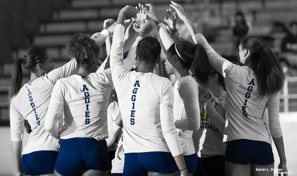 2014 A&T Volleyball Team Huddle Black & White