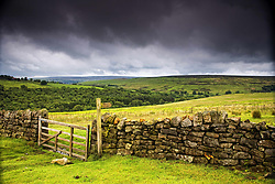 July 21, 2019 - Stone Fence, Yorkshire, England (Credit Image: © John Short/Design Pics via ZUMA Wire)