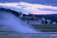 Steam venting from hot spring in evening at Biscuit Basin, Yellowstone National Park, WYOMING