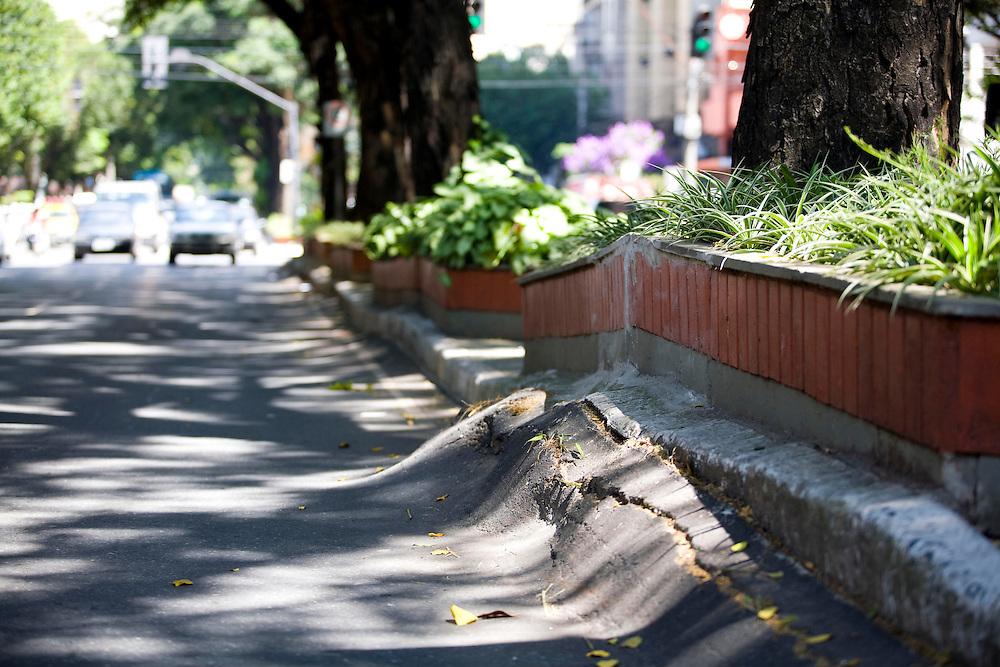 Belo Horizonte_MG, Brasil...Raizes de arvores na calcada da avenida Augusto de Lima no bairro Barro Preto...The tree roots in the sidewalk of the Augusto de Lima avenue in Barro Preto neighborhood...Foto: LEO DRUMOND / NITRO