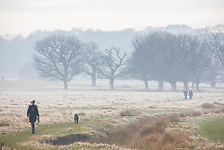 © Licensed to London News Pictures. 05/12/2019. London, UK. A dog walker enjoys a frosty and misty Richmond Park this morning as weather forecasters predict warmer weather for the South East. Photo credit: Alex Lentati/LNP