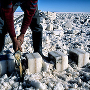 .  Salar de Uyuni ( Uyuni salt flat ) . Department  of Potos&Atilde;&shy;  ( Los Lipez).  South West  Bolivia. <br /> Adult Altiplano America Andes Arid  Aridity Axe Barren  Bicycle Block  Bolivia Cleaver Color Colour Cone  Day Daytime  Department  Desert Desolate Desolation Dry  Exterior Extraction  Geography Hack Hard Hatchet  Heat Highlands  Horizon Horizontal Human  Latin America Lake  Los Lipez Male Man Men Miner Mining Nature  Resource  Natural  One Outdoors Outside  Pan People  Person Pyramide Potos&Atilde;&shy;  Production  Region Resource Rural Salar de Uyuni  Salt Flat  Salt Pan  Salt lake  Scenic Seasoning  Single Shape South America  Southwest  Sud Sunglasses  Surface Travel  West White Work  Worker Working