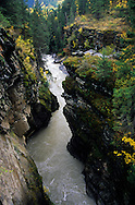 Bull River gorge and canyon in fall. Southeast British Columbia