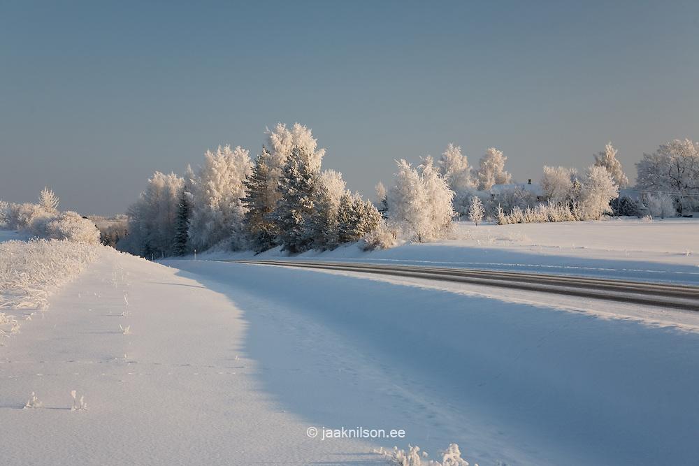 Winter, Tartu County, Estonia, Europe