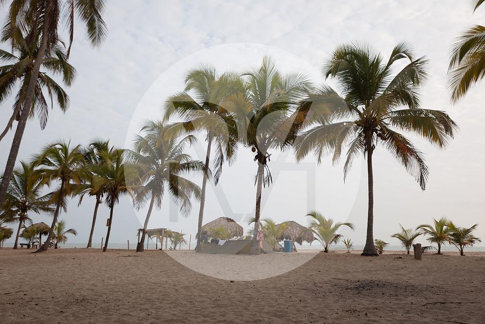 KOLUMBIEN - LA POZA - Kokospalmen am Strand der Surfschule CasaGrande - 14. April 2014 © Raphael Hünerfauth - http://huenerfauth.ch