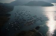 Hong Kong. aerial view of a fish farm  (new territories)  Wu Lei kiu       /  fermes de poissons à   /  fermes de poissons à  Wu Lei kiu  /  Vue aérienne sur la baie de Tolo harbour un espace vierge dans les nouveaux territoires;   Wu Lei kiu      /  R94/16    L1062  /  R00094  /  P0001926